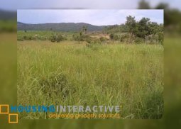 3 HECTARES OF VACANT LOT FOR SALE IN PALAWAN