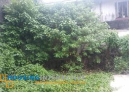 LOT FOR SALE IN CUBAO