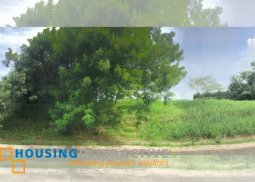 RESIDENTIAL LOT FOR SALE IN AYALA WESTGROVE HEIGHTS