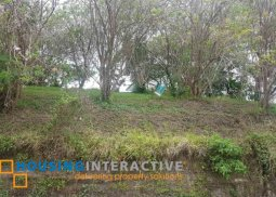 LOT FOR SALE IN AYALA WESTGROVE HEIGHTS CAVITE