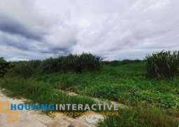 LOT FOR SALE IN MONDIA BY AYALA LAND IN NUVALI LAGUNA
